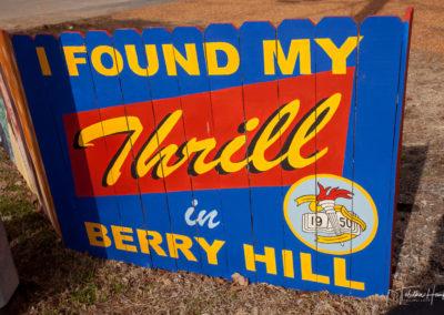 Nashville Berry Hill Murals 8