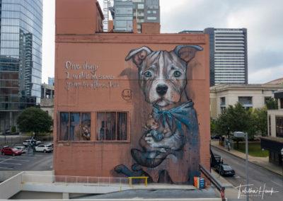Downtown Nashville Mural 38