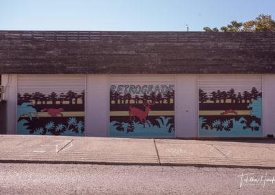 Downtown Nashville Mural 49