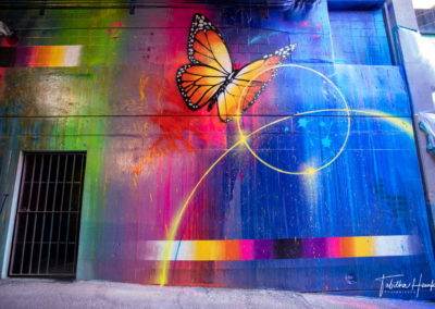 Downtown Nashville Mural 59
