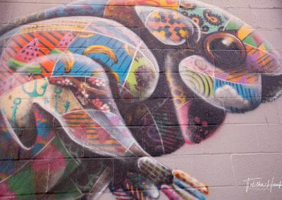 East Nashville Murals 170