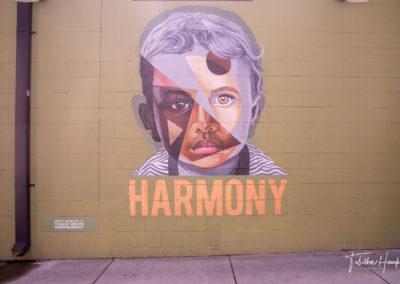 Germantown Nashville Murals 8