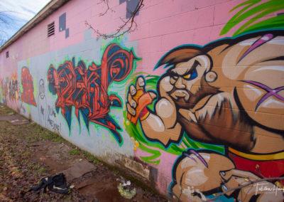 Gulch Nashville Murals 24