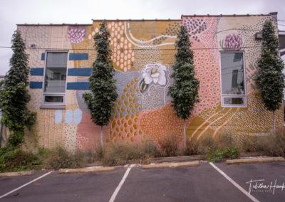 Gulch Nashville Murals 47