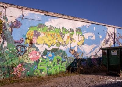 North Nashville Murals 23