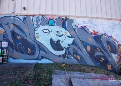 South Nashville Murals 10