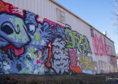 South Nashville Murals 11