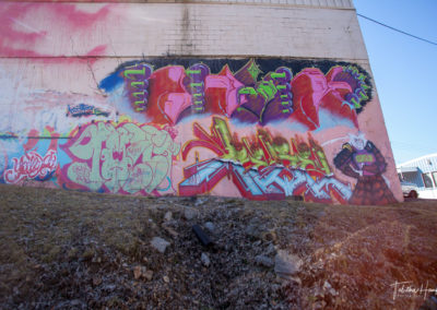 South Nashville Murals 12