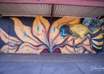 South Nashville Murals 34