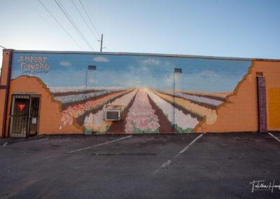 West Nashville Murals 9